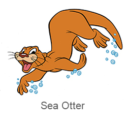 CRCPreschool_Sea-Otter