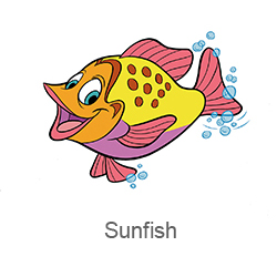 CRCPreschool_Sunfish